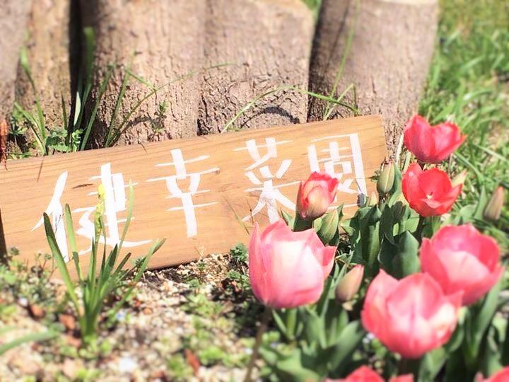 健幸菜園⑤看板